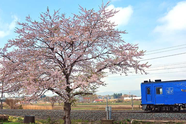 キハ141 石鳥谷-花巻空港